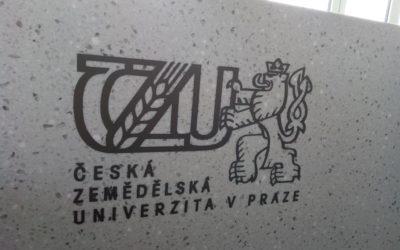 Školení vedení ČZU – rektorátu